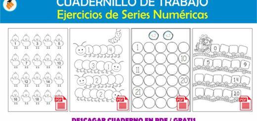 Cuadernillo de Series Numéricas
