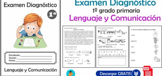 Examen Diagnóstico 1º grado primaria