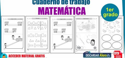Libro de Matemática para 1º