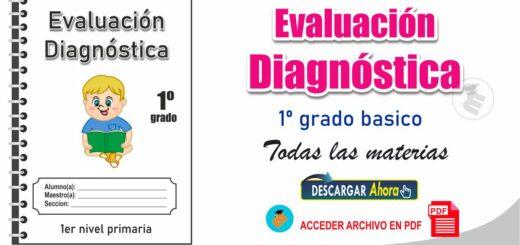 Evaluación diagnóstica de 1º Nivel