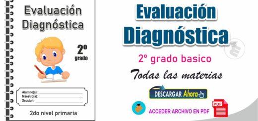 Evaluación diagnóstica de 2º Nivel