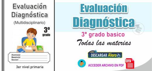 Evaluación diagnóstica de 3º Nivel