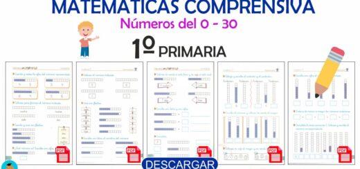 Cuaderno de Matemática comprensiva