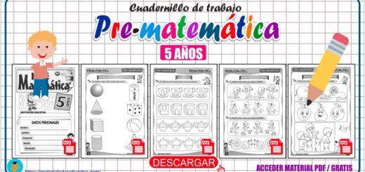 Cuaderno de trabajo Pre-Matemática