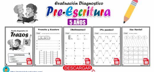 Trazos prueba diagnóstico