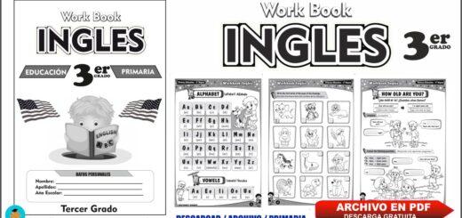 Cuaderno de trabajo (Work Book)