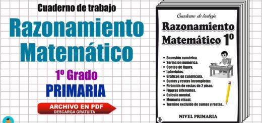 Cuaderno de trabajo Matemática